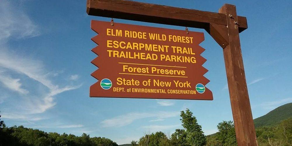 Escarpment Trail Run, 2017